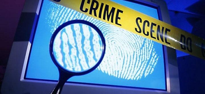 cyber-crime-europol
