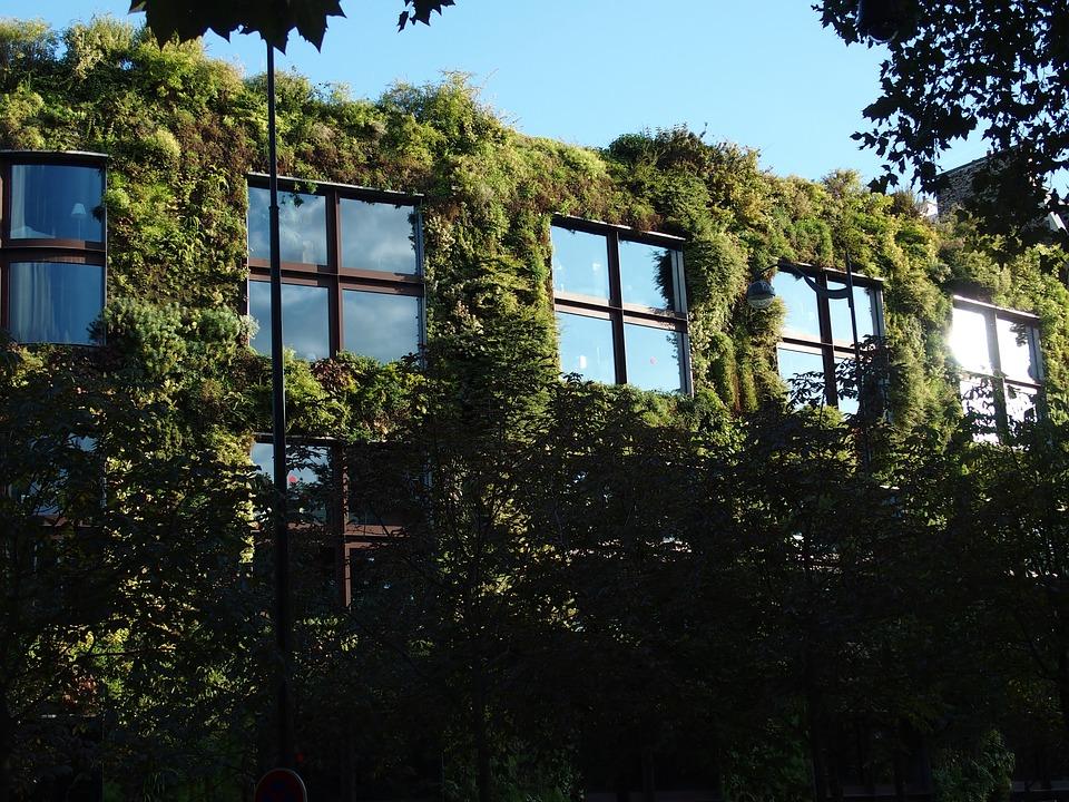 L'encyclopédie des solutions: toitures et murs végétalisés
