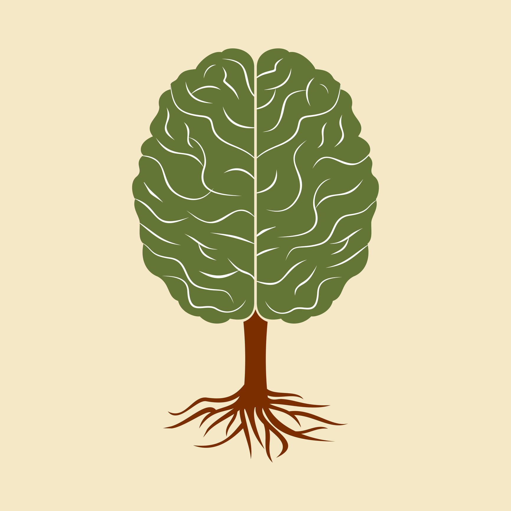 Intelligence végétale