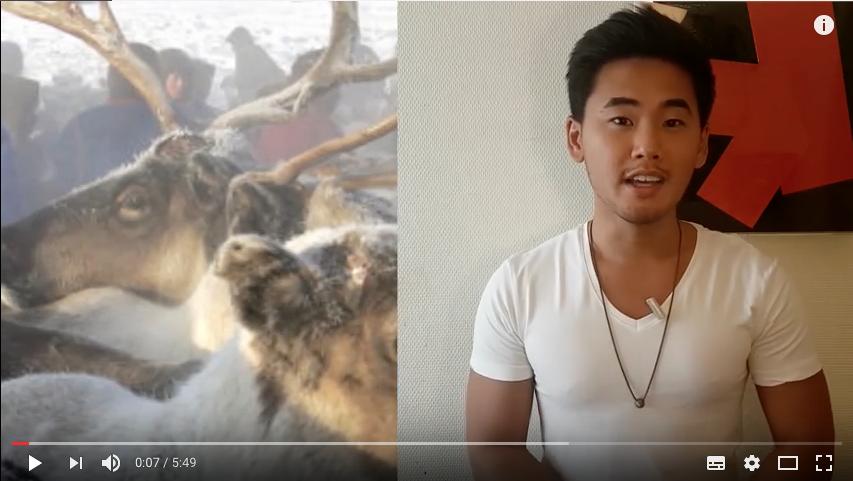 L'anthrax tue des centaines de rennes en Sibérie [VIDÉO]