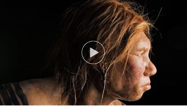 La preuve que Néandertal était cannibale [VIDÉO]