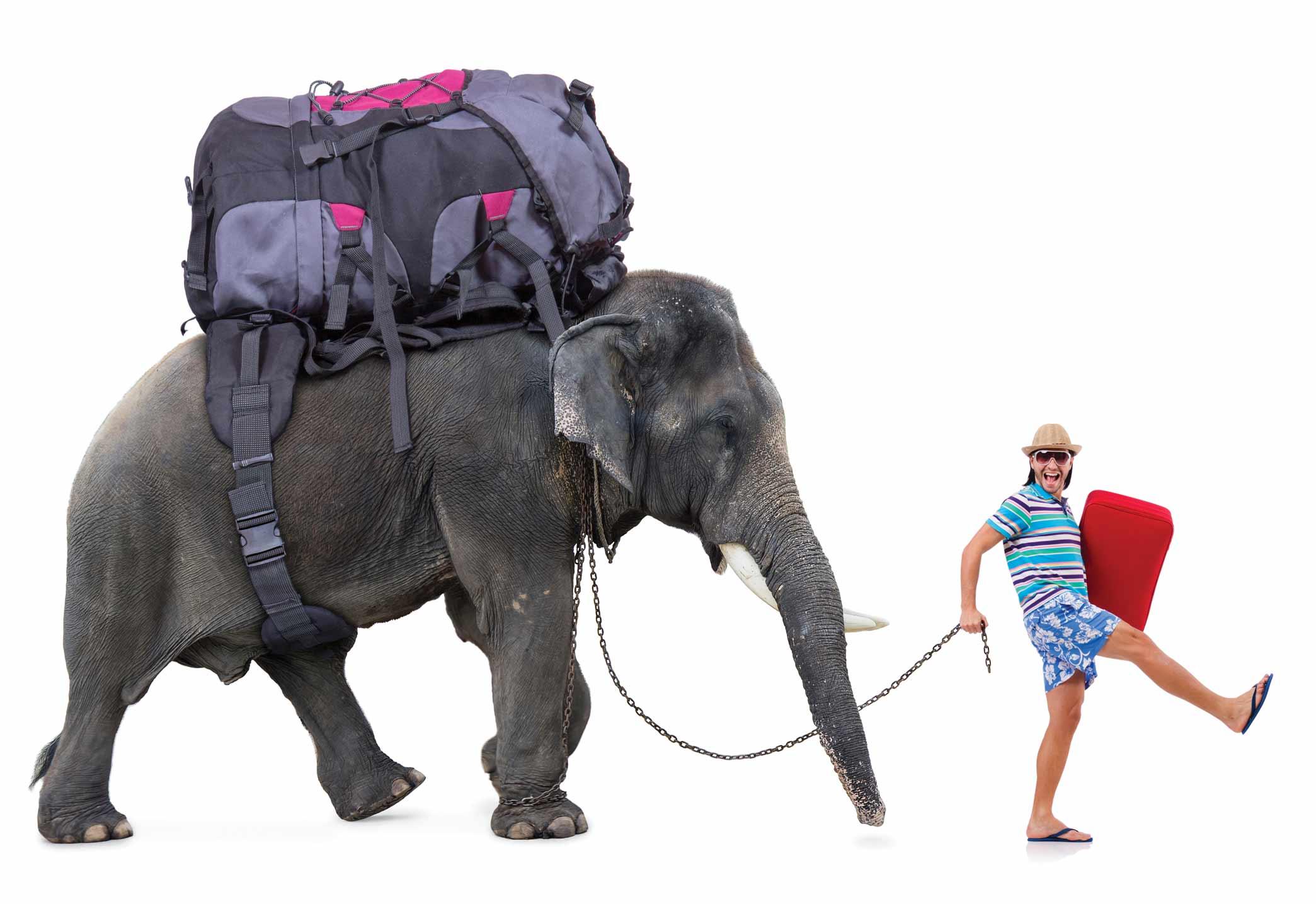 Quel genre de voyageur êtes-vous ?