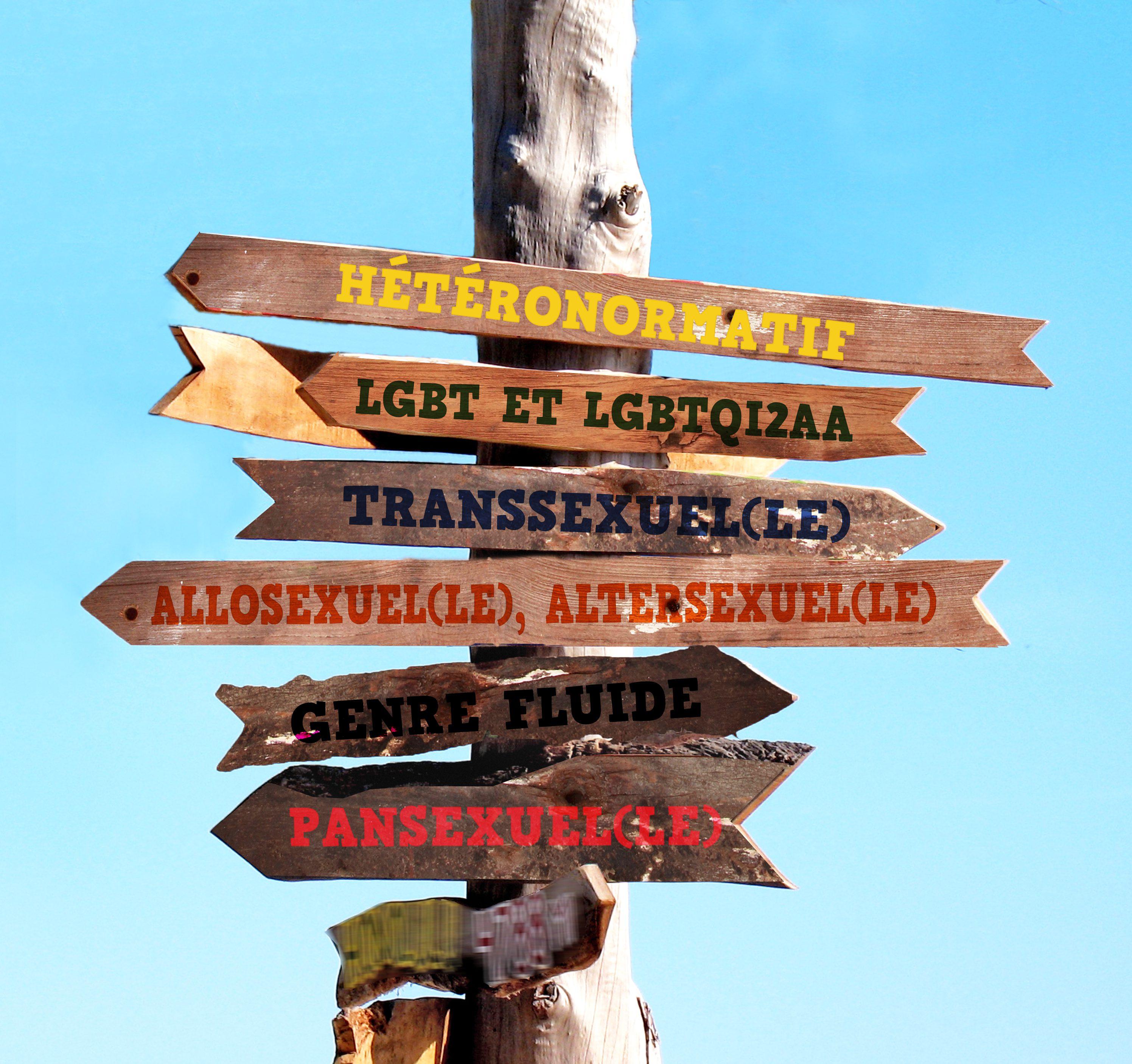LGBTQIA+ : Le sens de l'orientation