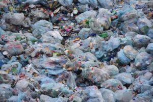 Plastique: une bactérie révolutionnaire pour contrer la pollution !